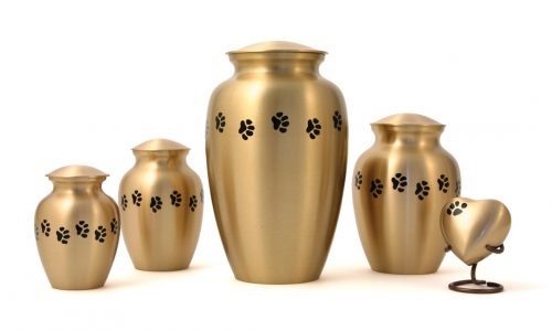 Classic Paw Series Urn - Brass